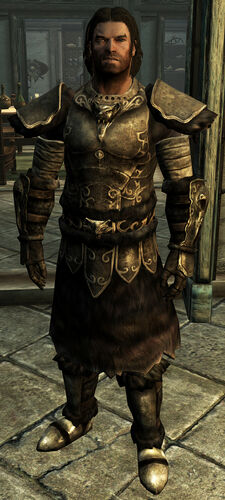 https://static.wikia.nocookie.net/elderscrolls/images/2/2d/Wolf_Armor.jpg/revision/latest/scale-to-width-down/225?cb=20150609081708