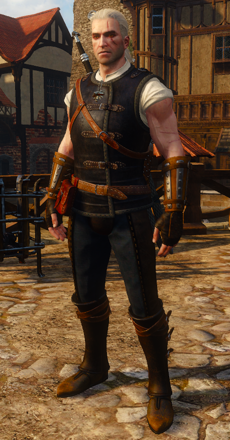 https://static.wikia.nocookie.net/witcher/images/2/20/Tw3_Feline_Armor_1.png/revision/latest/scale-to-width-down/458?cb=20160323141456