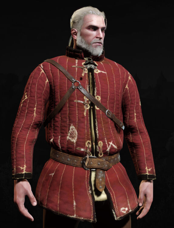 https://static.wikia.nocookie.net/witcher/images/9/9b/Shiadhal_Armor_MenuF.jpg/revision/latest/scale-to-width-down/574?cb=20190228014946